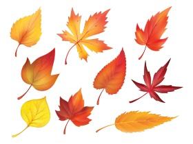 春去秋來學成語