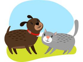 談談飼養寵物的利弊 初級
